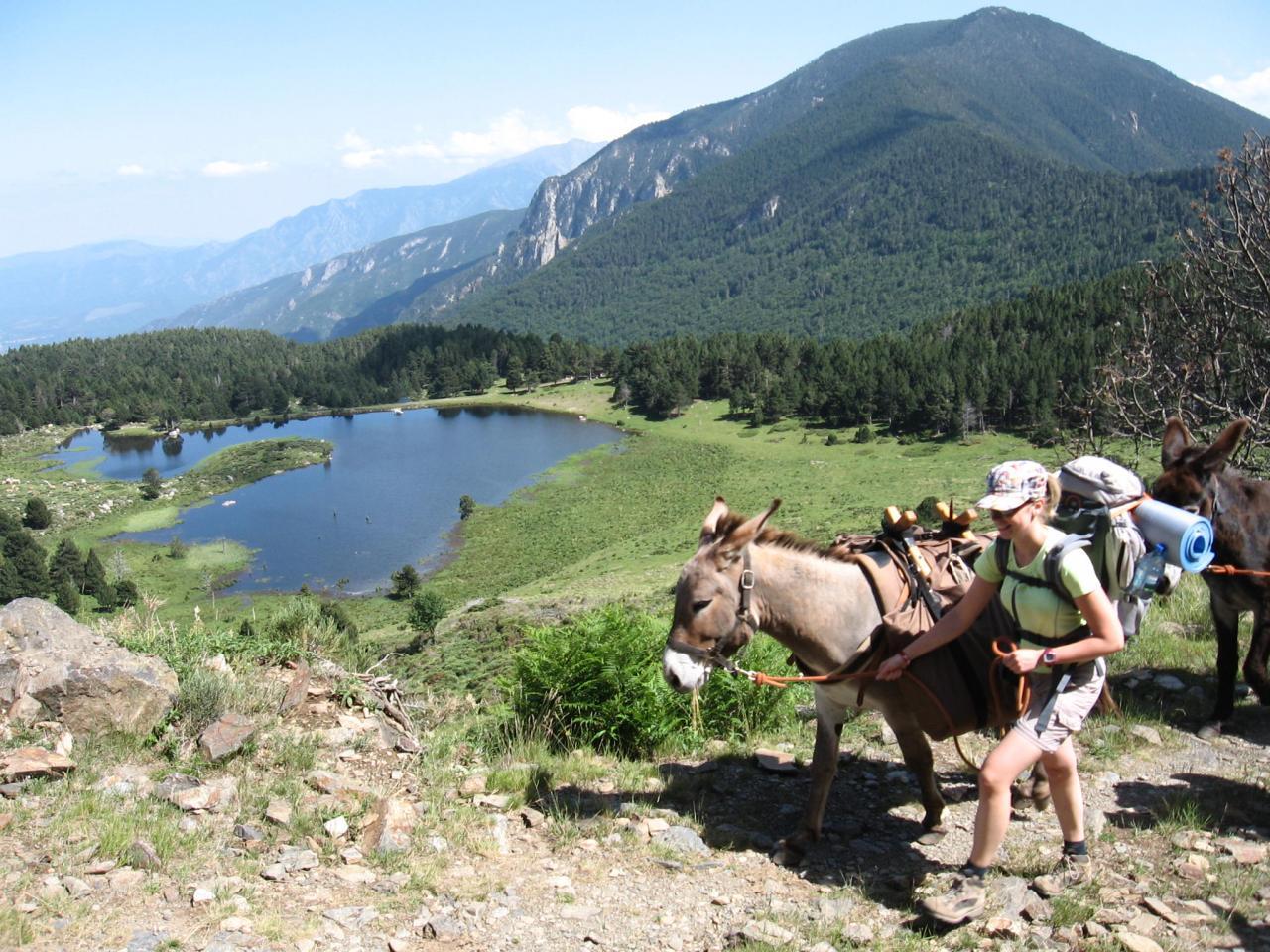 Randonner avec un ne pyr n es location ne pyr n es orientales balade do - Les pyrenees catalanes ...
