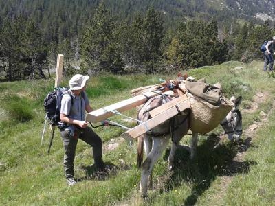 Portage en montagne avec un âne